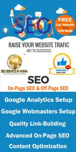 Rigt-Side-Free-SEO-Banner