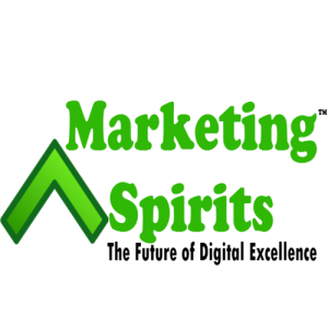 Top 10 Digital Marketing Agencies in India 2018-2019-MarketingSpirits